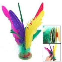 Feather Kicking Shuttlecock